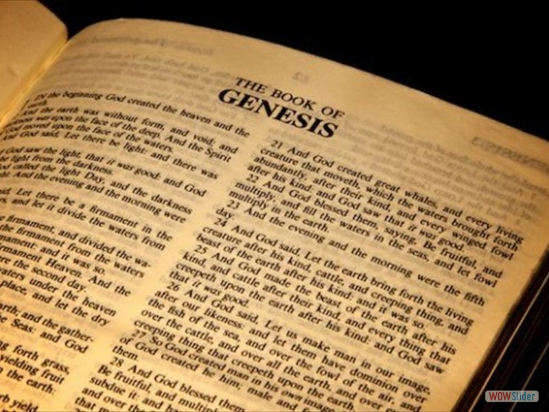 Genesis Tell Us About a Creator